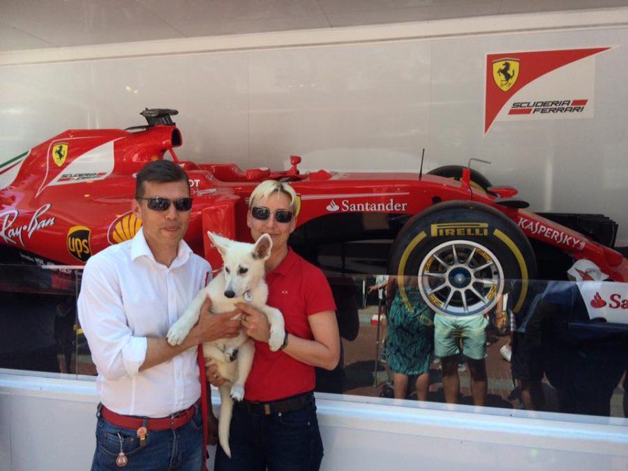 BTWW Wahlman & F-1 Ferrari Räikkonen ! 36