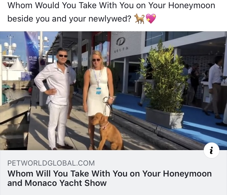 Whom Would You Take With You on Your Honeymoon beside you and your newlywed? 🐕💖 28
